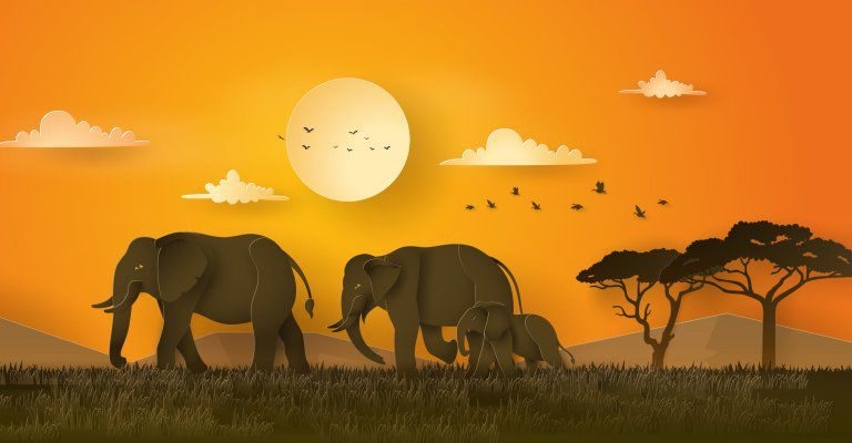 About conscious Living - elephants illustration