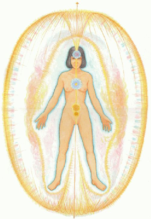 About Conscious Living - haric_system